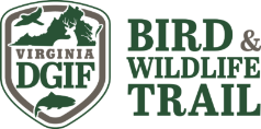 Graphic of the Virginia Bird and Wildlife Trail Logo from the Department of Game and Inland Fisheries